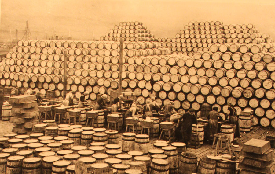 herring-casks