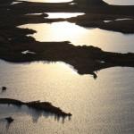 Lake Myvatn seen from Vindbelgjarfjall