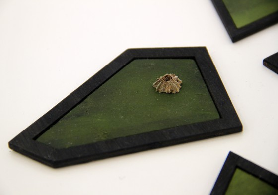 A micro volcano on seaweed