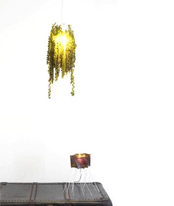seaweed-exhibit-3.jpg