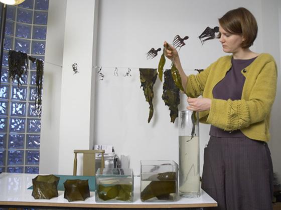 seaweed-exhibit-6.jpg