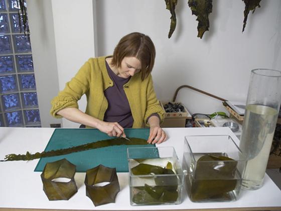 seaweed-exhibit-8.jpg