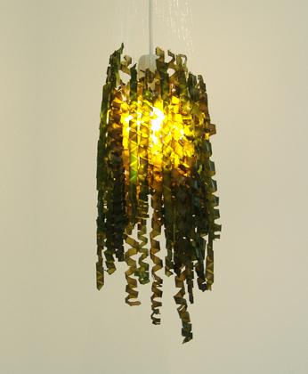kelp-contruct-6.jpg